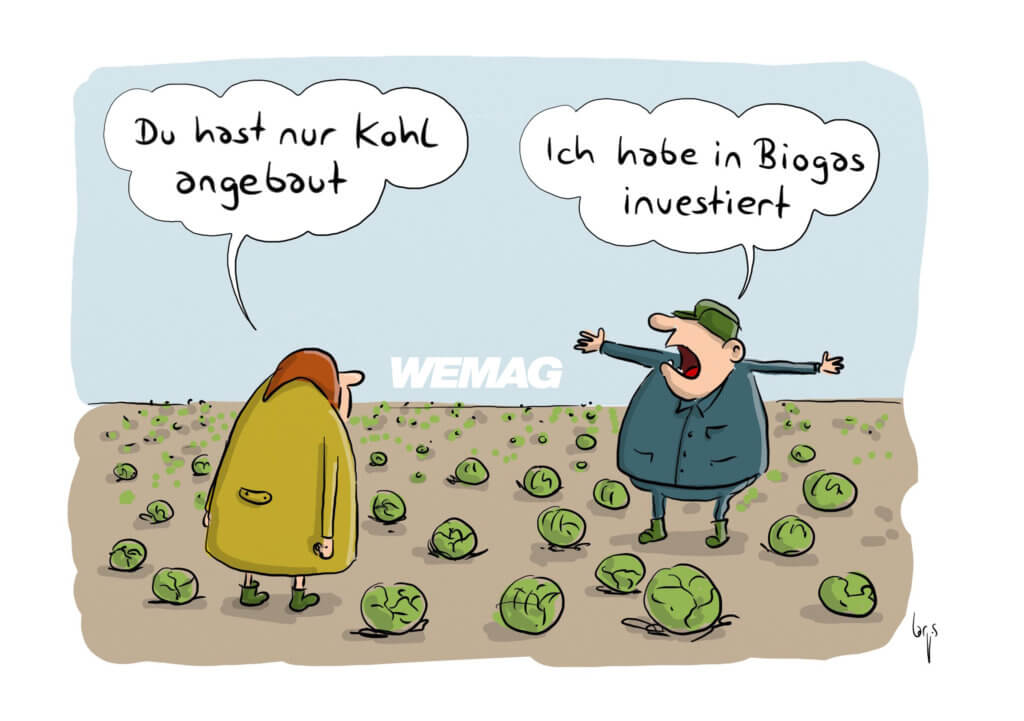 Facebook Cartoons WEMAG Mario Lars